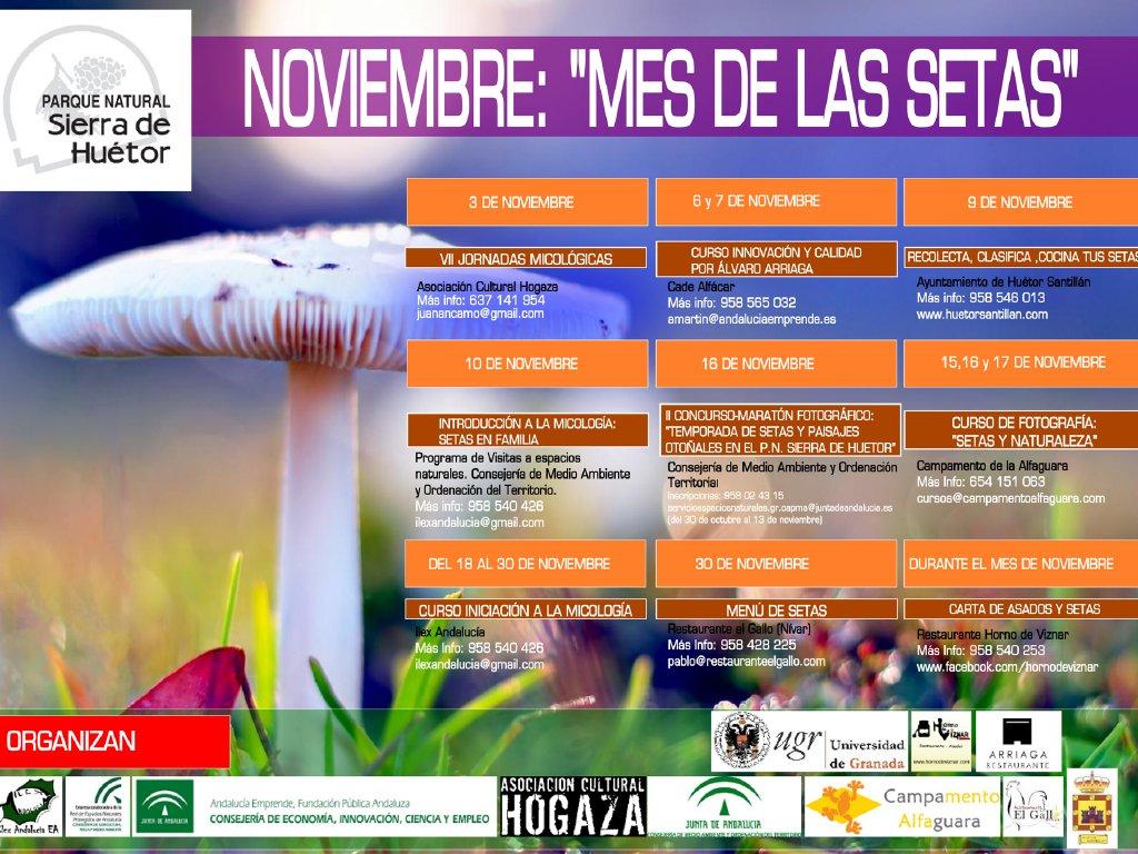 Noviembre, mes de las setas :: © Restaurante Horno de Víznar